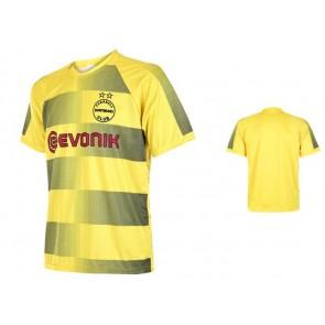 Dortmund thuisshirt aubameyang