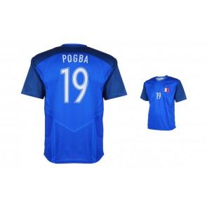 Frankrijk-Pogba shirt 2016-18