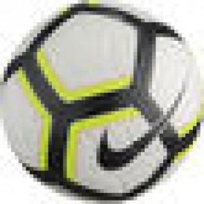 Nike Premier match bal